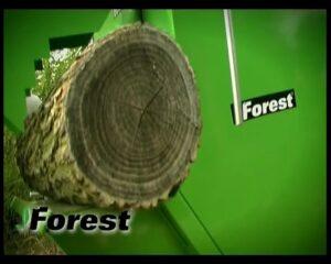 Tagliare i tronchi senza pericolo con la lama completamente coperta. TT600 220. L'operatore mostra i vari passaggi, da...