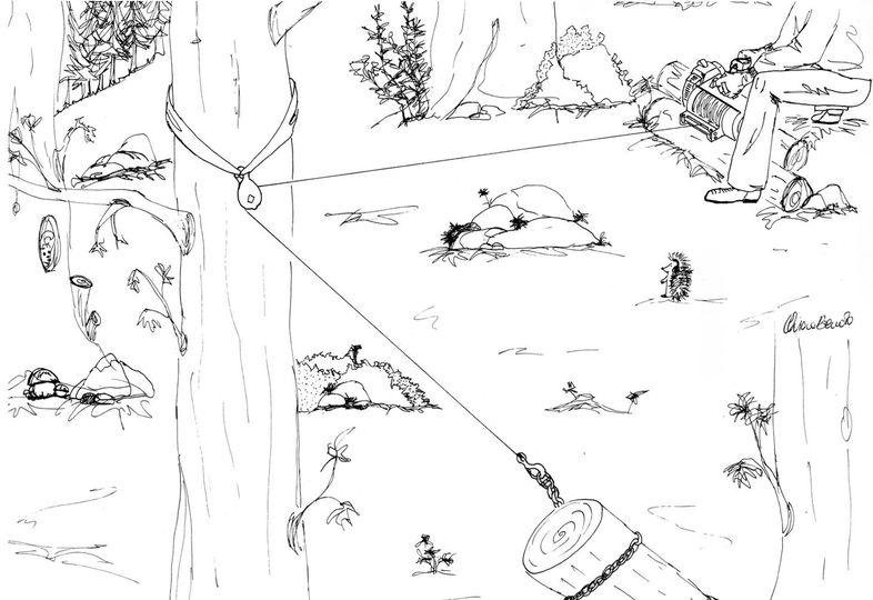 Utilisation correcte du treuil forestier portable: utilisez toujours (dans tous les cas) une poulie pour dévier la corde ...
