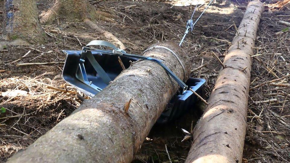 VF155 AUTOMATISCHES ULTRALIGHT MIT DY-FOREST-SEIL